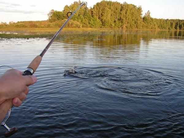 интернет рыбалка в ижевске